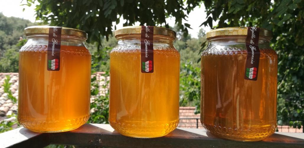 Miele millefiori. Le proprietà del miele.