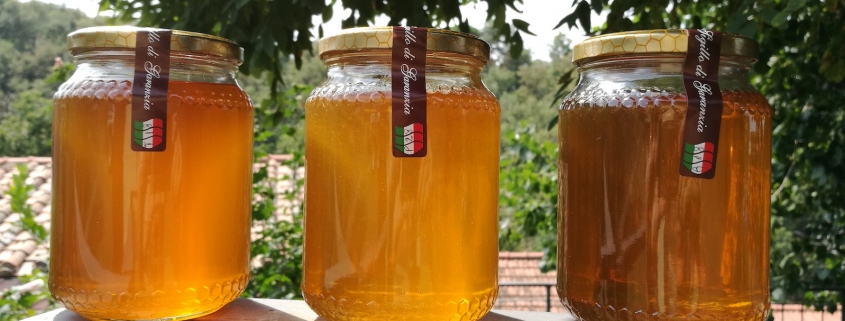 Tipologie di miele Millefiori