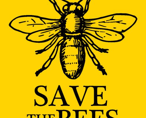 Come salvare le api